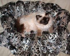 Faux Fur Pet Beds