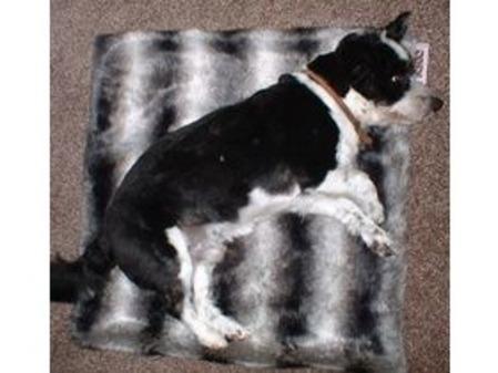SALE Small Chinchilla Faux Fur Pet Blanket